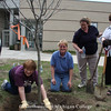 2008 - Planting a tree